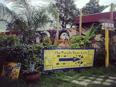 The Purple Bean Cafe