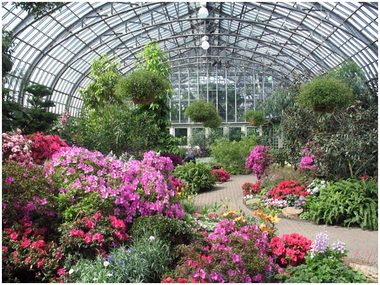 Garfield Park Conservatory All