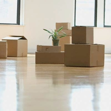 Orlando Moving Company Florida