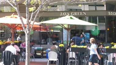 Java Green Cafe