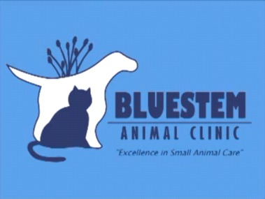 Bluestem Animal Clinic
