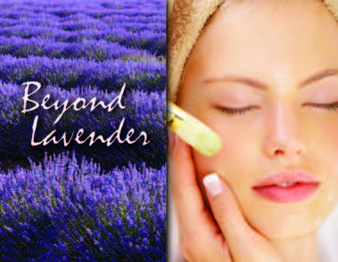 Beyond Lavender Facials