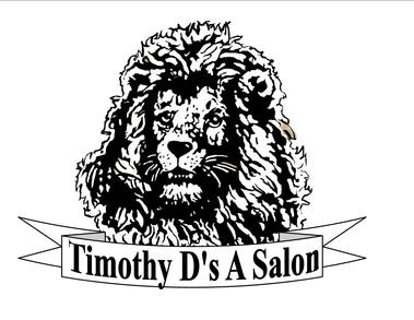 Timothy D's-A Salon